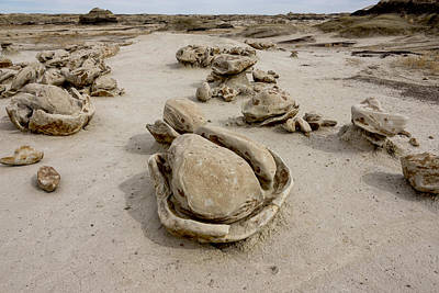 Photograph - Bisti Egg Factory 3 / De-na-zin Wilderness - Farmington New Mexico by Brian Harig