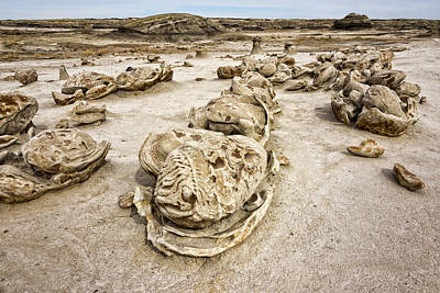 Photograph - Bisti Egg Factory / De-na-zin Wilderness - Farmington New Mexico by Brian Harig