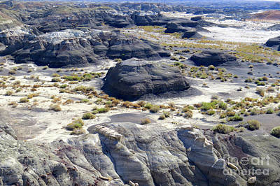 Photograph - Bisti Panorama by Frank Townsley