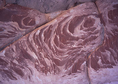 Photograph - Bisti Swirls by Tom Daniel