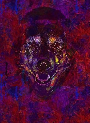 Digital Art - Bitch Hybrid Dog Animal Good Face  by PixBreak Art