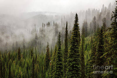 Photograph - Bitterroot Mists by Idaho Scenic Images Linda Lantzy