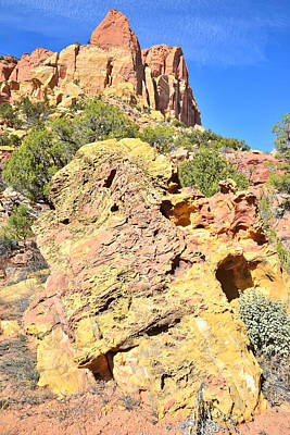 Photograph - Bizzare Boulder by Ray Mathis