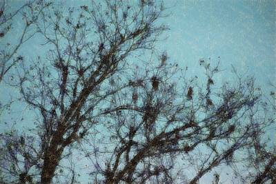 Digital Art - Black And Blue Smudge by Ellen Barron O'Reilly