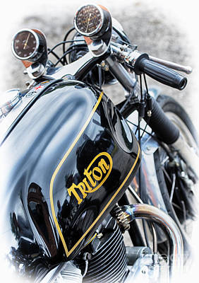 Photograph - Black And Gold Triton by Tim Gainey
