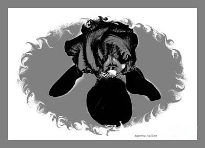 Digital Art - Black And Gray Digital Iris by Marsha Heiken