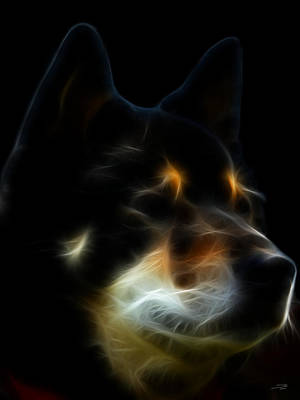 Purebred Digital Art - Black And Tan Shiba Inu by Stuart Turnbull