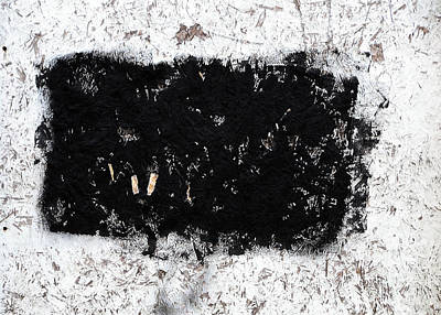 Black And White Abstraction Art Print by JoAnn Lense