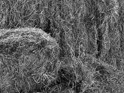 Photograph - Black And White Bales by Laurel Powell