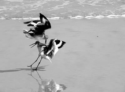 Photograph - Black And White Beach Fighters  by Chris Mercer