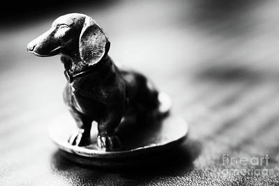 Photograph - Black And White Brass Dachshund by Cesar Padilla