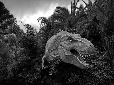 Photograph - Black And White Dinosaur by Aimee L Maher Photography and Art Visit ALMGallerydotcom