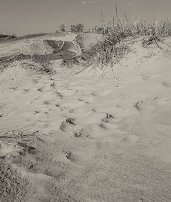 Photograph - Black And White Dunes Of Michigan by Dan Sproul
