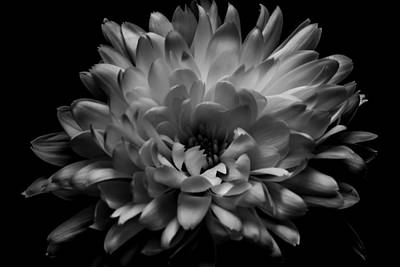 Photograph - Black And White by Erica Kinsella