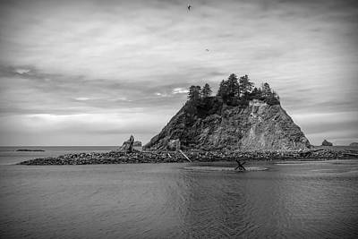 Photograph - Black And White First Beach Washington by Dan Sproul