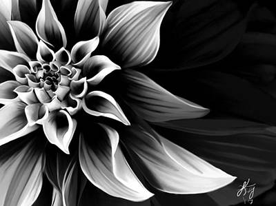 Close-up Digital Art - Black And White Flower by Kendall Tabor