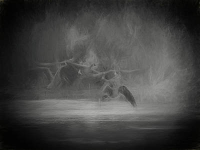 Photograph - Ghostly Geese by David March