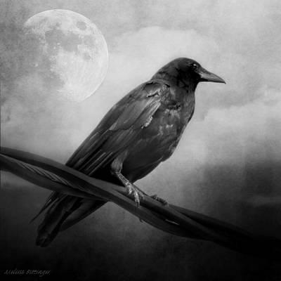 Black And White Gothic Crow Raven Art Art Print
