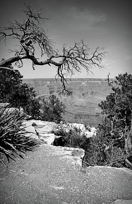 Photograph - Black And White Grand Canyon 2 by Aimee L Maher Photography and Art Visit ALMGallerydotcom