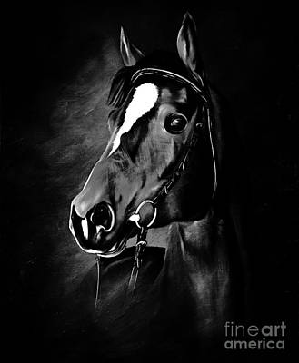 Landscap Painting - Black And White Horse Face by Gull G