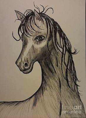 Drawing - Black And White Horse by Ginny Youngblood