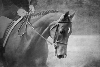 Dressage Art Photograph - Black And White Horse Photography - Softly by Michelle Wrighton