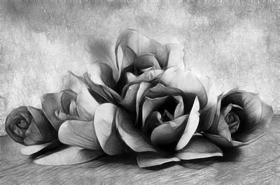 Black Is Beautiful Photograph - Black And White Is Beautiful by Georgiana Romanovna