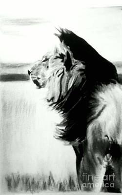 Pastel - Black And White Lion by Bonnie Cushman