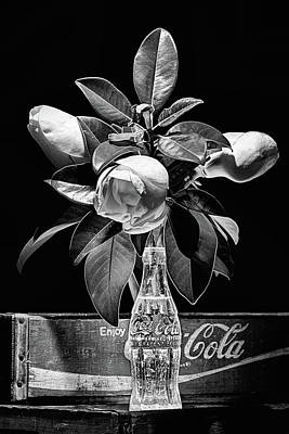 Photograph - Black And White Magnolia And Coke Still Life by JC Findley