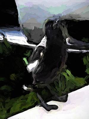 Digital Art - Black And White Magpie On The Porch by Jackie VanO