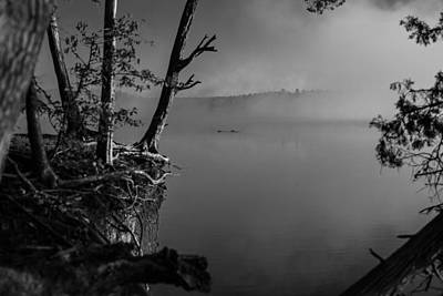 Photograph - Black And White Morning by Jessica Brown