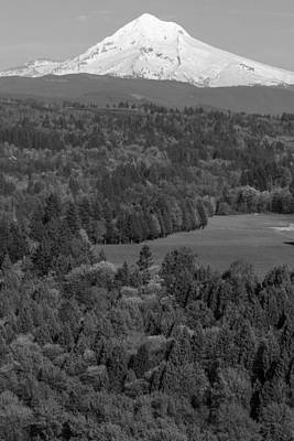 Photograph - Black And White Mt Hood by John McGraw