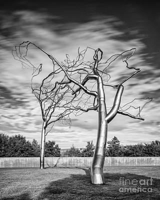 Kimbell Photograph - Black And White Photograph - Roxy Paine - Conjoined At The Museum Of Modern Art - Fort Worth Texas by Silvio Ligutti