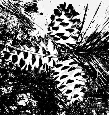Photograph - Black And White Pine Cone by Cindy New