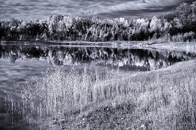Photograph - Black And White Pond by David Heilman