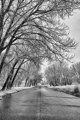Photograph - Black And White Portrait Of A Spring Snow by Tony Hake