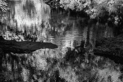 Photograph - Black And White Reflection by Vincent Billotto