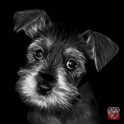 Digital Art - Black And White Salt And Pepper Schnauzer Puppy 7206 F by James Ahn