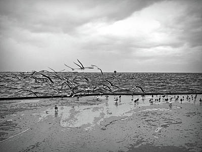 Photograph - Black And White Sands Of Time by Aimee L Maher Photography and Art Visit ALMGallerydotcom