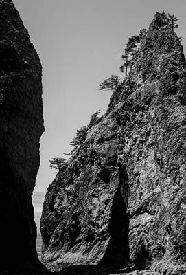 Photograph - Black And White Sea Stack  by Dan Sproul