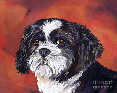Black And White Shih Tzu On Red Original by Cherilynn Wood