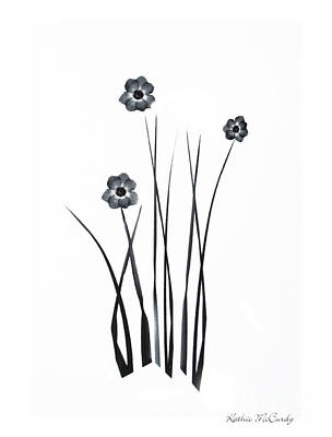 Pressed Flowers Mixed Media - Black And White Simplicity by Kathie McCurdy