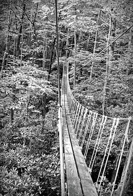 Photograph - Black And White Sky Bridge 2 by Aimee L Maher Photography and Art Visit ALMGallerydotcom