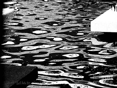 Photograph - Black And White Study Of Zen Meditative Pool by Carol F Austin
