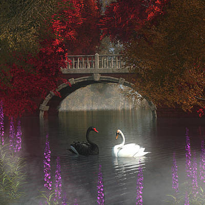 Painting - Black And White Swans by Jan Keteleer