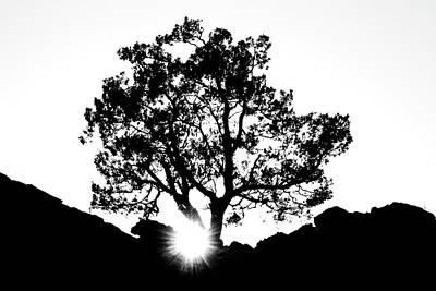 Thomas Kinkade Rights Managed Images - Black and White Royalty-Free Image by Tyson Kinnison