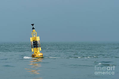 Photograph - Black And Yellow Buoy  by Clayton Bastiani