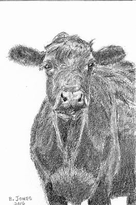 Drawing - Black Angus by Barry Jones