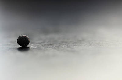 Photograph - Black Ball Reflection Close Up by Prakash Ghai