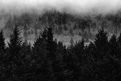 Photograph - Black Balsam Tree Line  by Donnie Whitaker